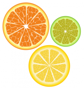 citrus_slices_by_isoflow-d4urwg9